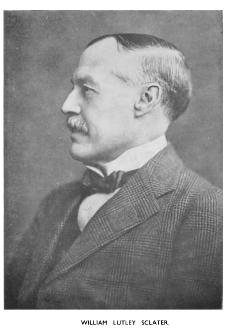 William Lutley Sclater